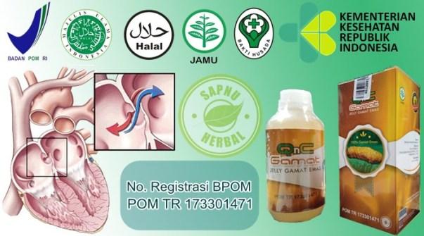 Obat Jantung Bocor Herbal QnC Jelly Gamat